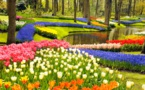 Journée de détente et de découverte au parc floral de Keukenhof le 11 mai