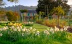 Encore quelques places pour visiter Giverny le 22 mai 2019 !
